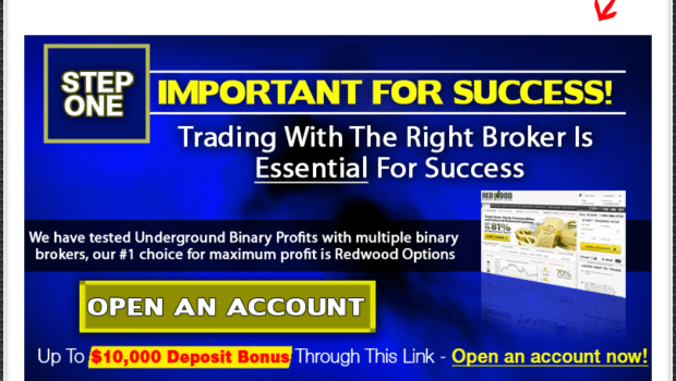 underground binary profits