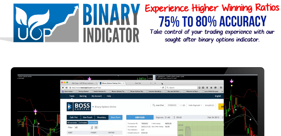 Online binary option calculator