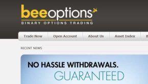 bee-options