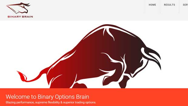 Binary options brain review