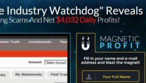 magnetic-profit