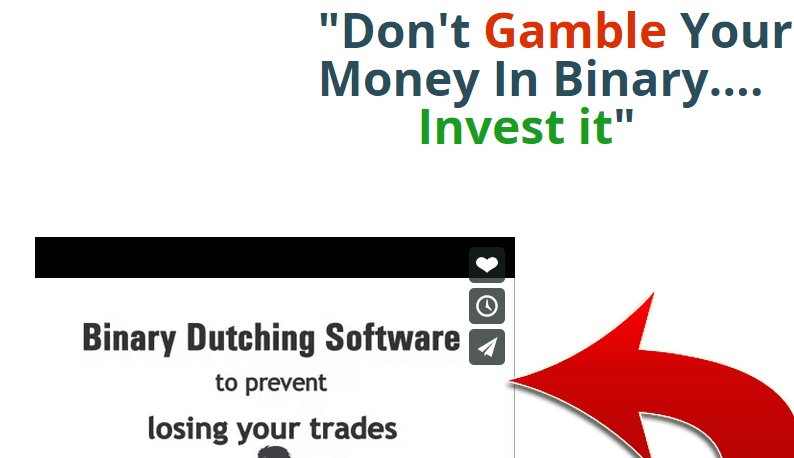 binary dutching software