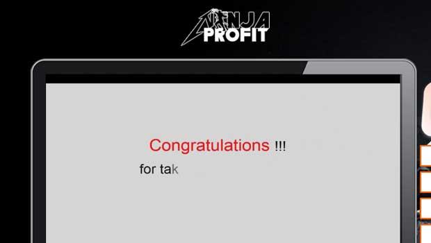 ninja-profit