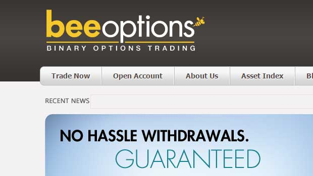 bee-options